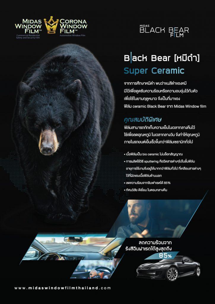 Aw Midas Black Bear Leaflet2 18 7 60 Cv 725x1024